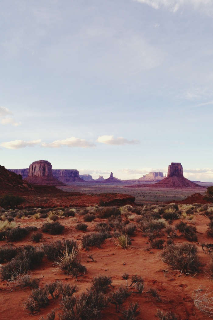 Sunday's Society6 - Monument Valley view
