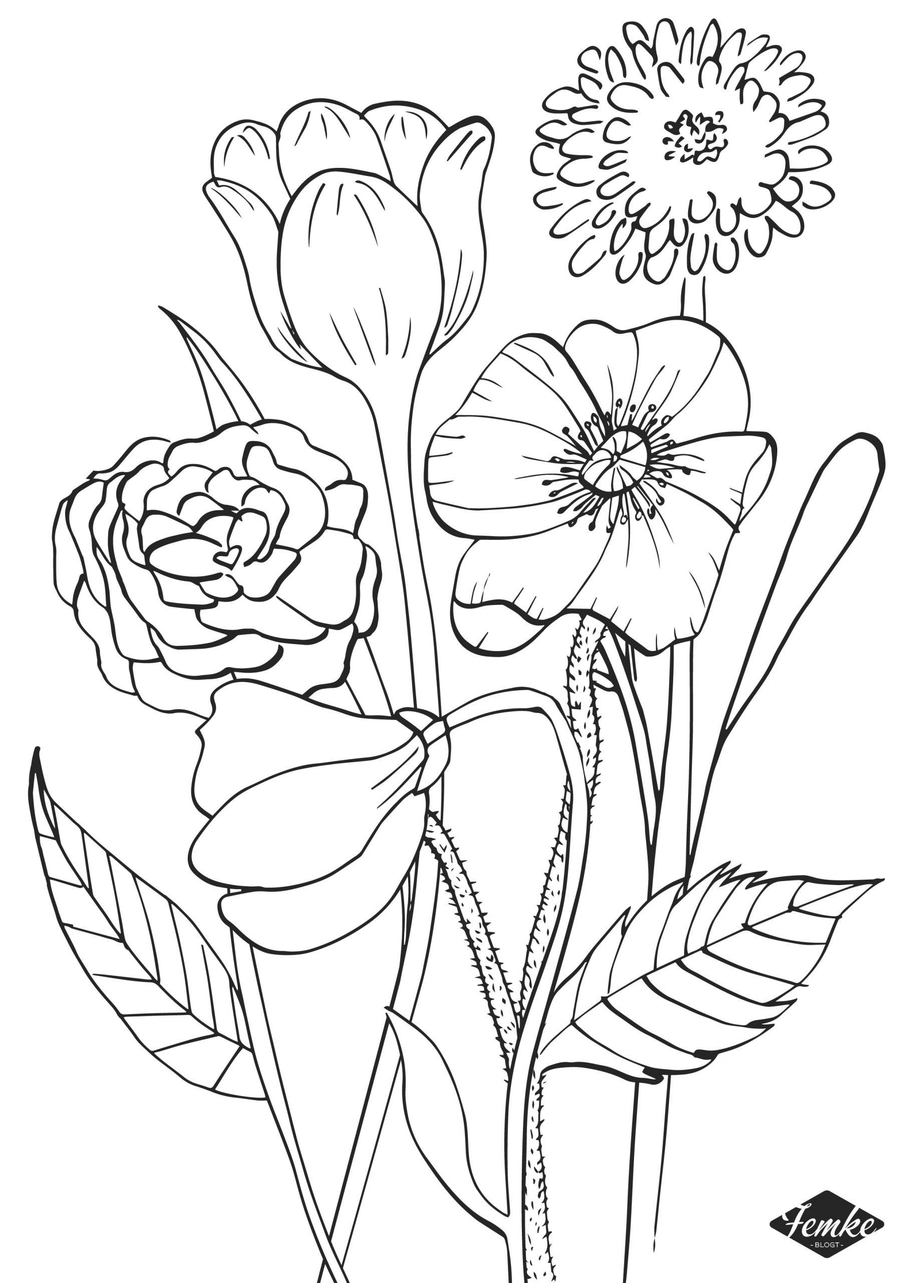 Vier de lente met een gratis lente kleurplaat!