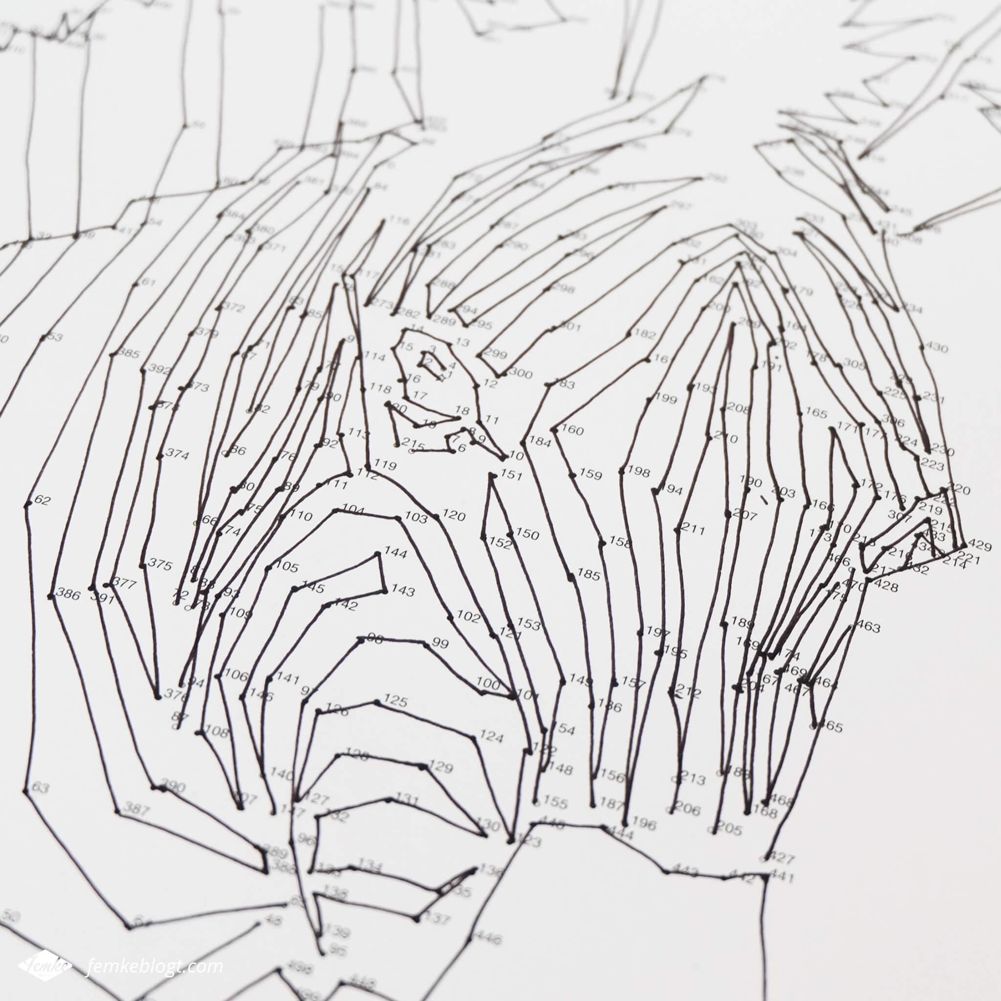 Dot-to-dot puzzelboek | Verbind de puntjes en maak een mooie tekening zoals deze zebra.