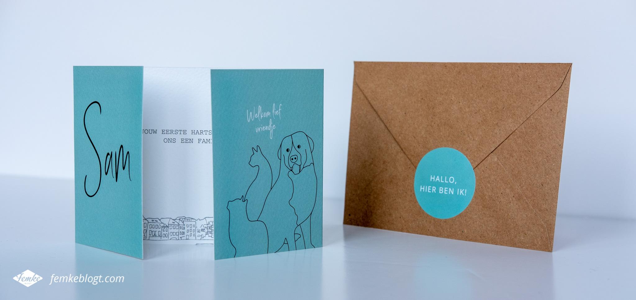 Femke ontwerpt | Geboortekaartje Sam