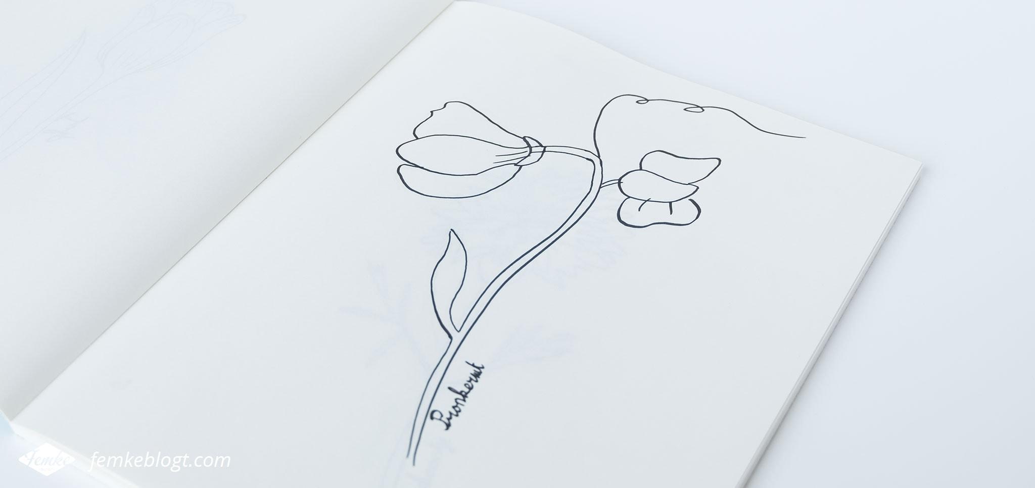31 Dagen bloemen #6 – Pronkerwt