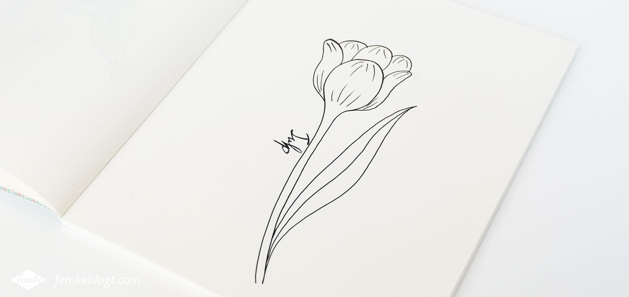 31 Dagen bloemen #5 – Tulp