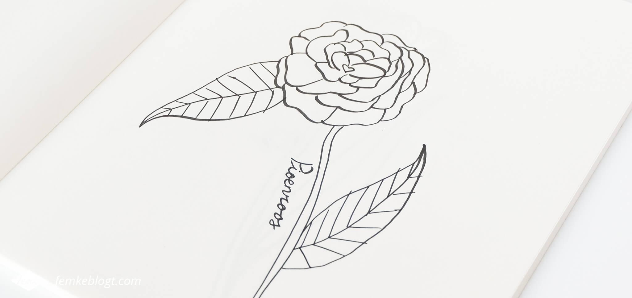 31 Dagen bloemen #4 – Pioenroos